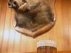 bier_sau_1